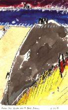 beachrobber